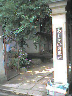 azisai2.jpg